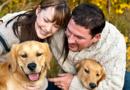Importancia de las mascotas en el entorno familiar