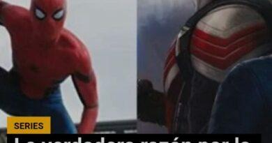 La verdadera razón por la que Spiderman no estuvo en The Falcon and The Winter Soldier