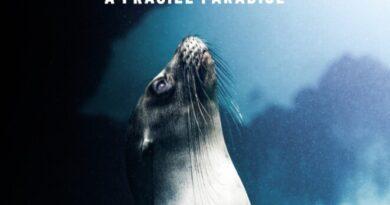 Corona Studios lanza documental sobre las Islas Galápagos